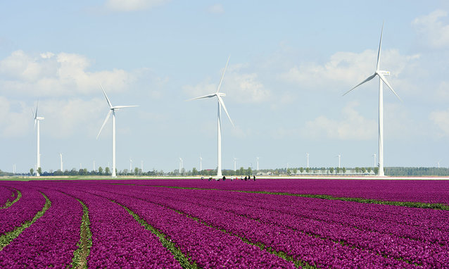 Repower 3.4M im Windpark Zuidlob in Flevoland , NL