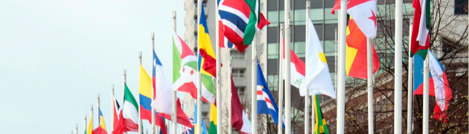 Europese vlaggen.